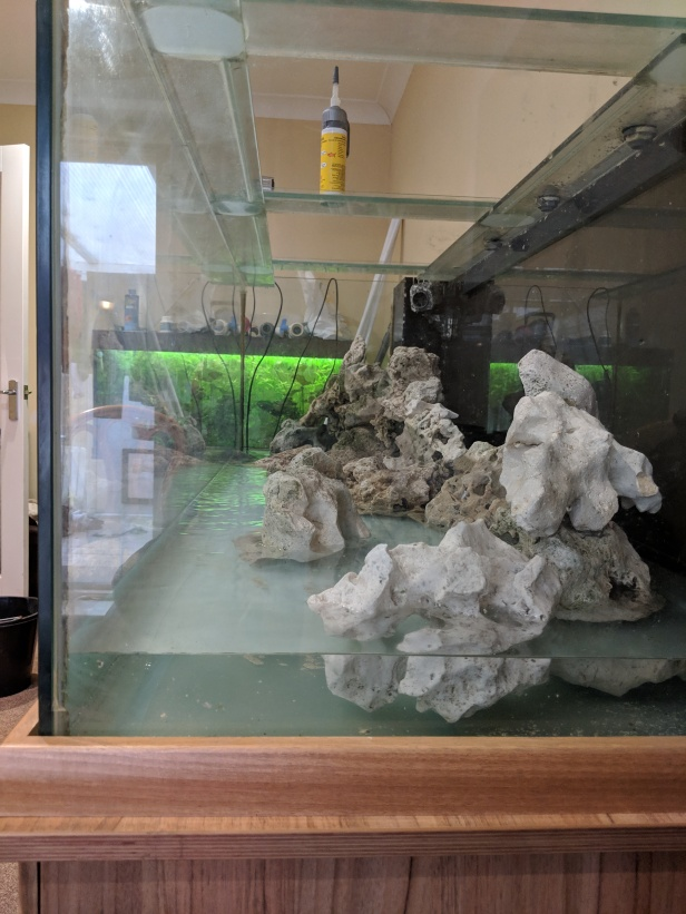 Aquascape 6ft tank side view