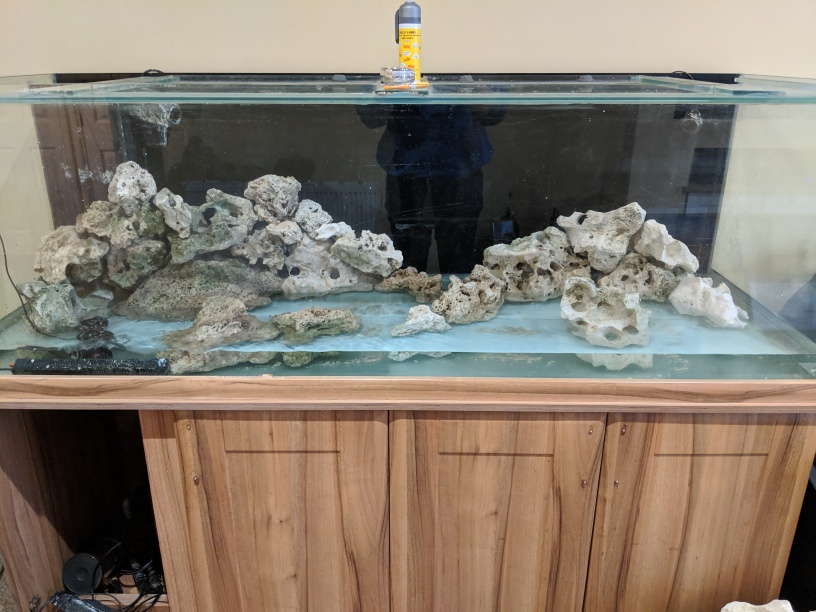 Aquascape 6ft tank