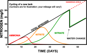 Nitrogen Cycle Example Graph