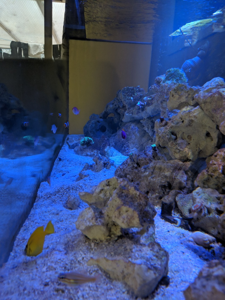 Marine Tank Side View 17/04/19